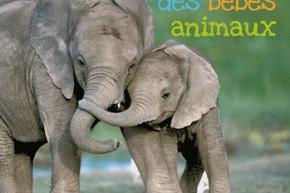 2010_La_journee_des_bebes_animaux