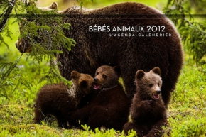 2011_Agenda_calendrier_Bebes_animaux