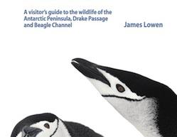 2011_Antarctic_Wildlife