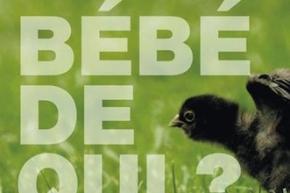 2012_Bebe_de_qui