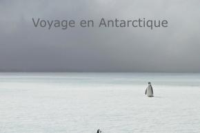 2013_VoyageEnAntarctique