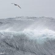 Tempête dans l'océan Austral