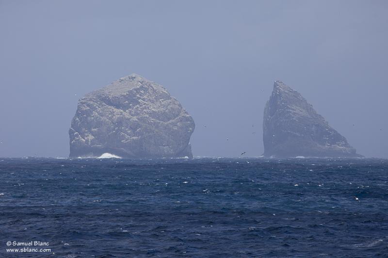 Stac Lee, archipel de Saint Kilda, Ecosse
