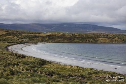 Plage de Carcass aux Falkland (Malouines)