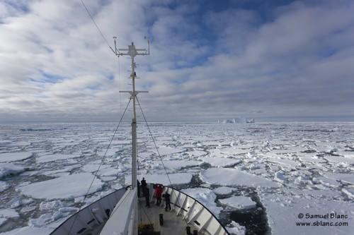 Navigation dans les glaces au large de la Terre Adélie
