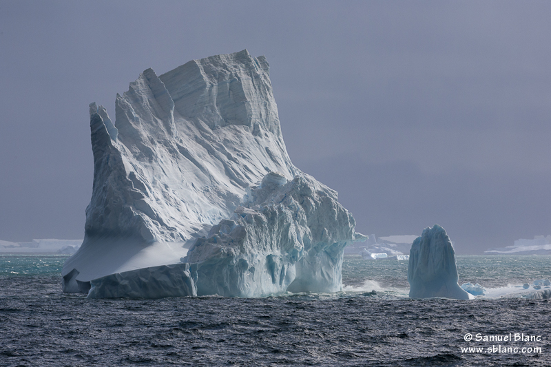 Icebergs dans l'océan Austral
