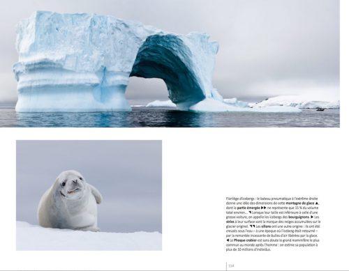 """Extrait du livre """"Antarctique, voyage en péninsule"""""""
