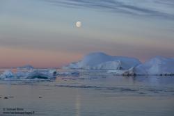 Lune et icebergs / Moon and icebergs