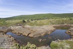 Rivière et toundra