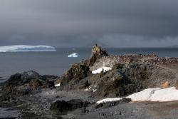 Ile Half Moon / Half Moon Island