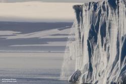 Glacier Brasvell / Brasvell Glacier