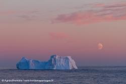 Iceberg et iceberg / Iceberg and sunse