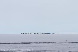Camp scientifique sur la glace / Scientist on ice