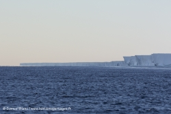 Ice shelf de Ross