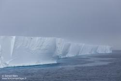 Ice-shelf de Ross
