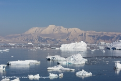 Iceberg et Mont Français
