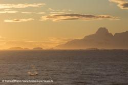 Coucher de soleil et orques / Sunset and orcas