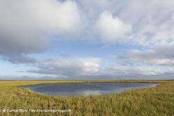 Kolyuchin Inlet