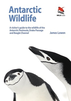 Antarctic Wildlife, 2011