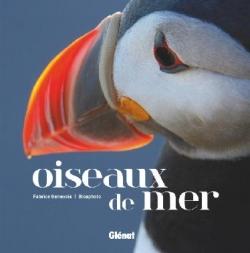 """Livre """"Oiseaux de mer"""", Genevois, Glénat, 2017"""