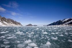 Glace dérivante dans le Fuglefjord / Drifting ice in Fuglefjord