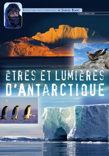 Exposition photos Etres et lumieres d'Antarctique