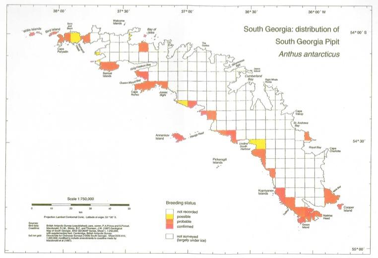 Carte de répartition du pipit de Géorgie du Sud avant la dératisation