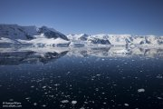 La baie Wilhelmina en Antarctique