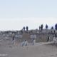 Touristes en mer de Ross, Antarctique