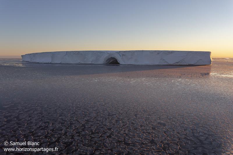 Pancakes et iceberg tabulaire en Antarctique